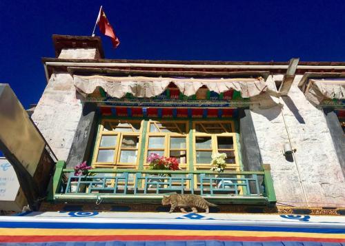 尼泊尔对外资的吸引力有多大