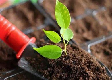 农业土壤调理剂