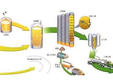 废弃油脂制备生物柴油技术