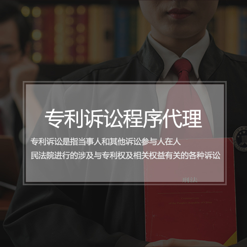 专利诉讼程序代理