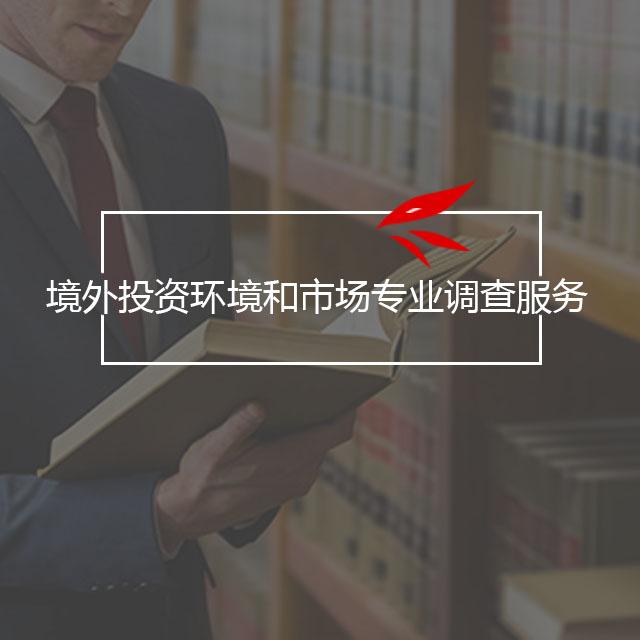 境外投资环境和市场专业调查服务