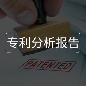 专利分析报告