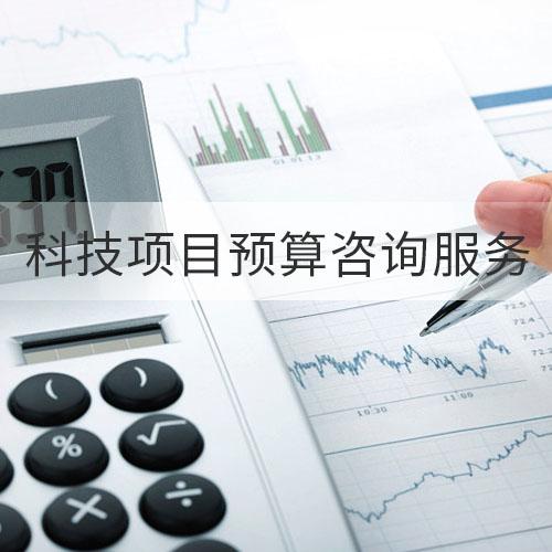 科技项目预算咨询服务