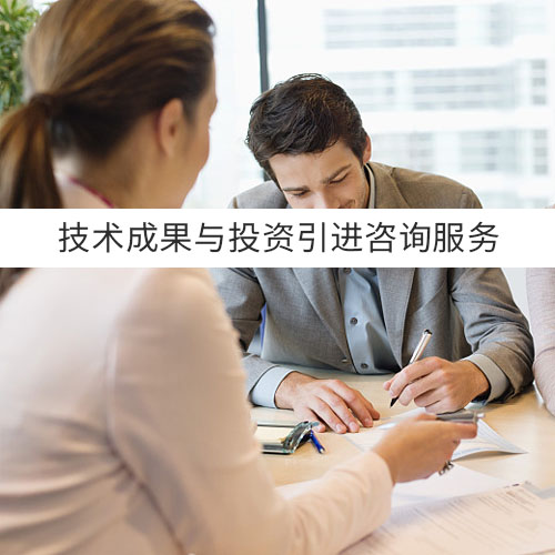 技术成果与投资引进咨询服务