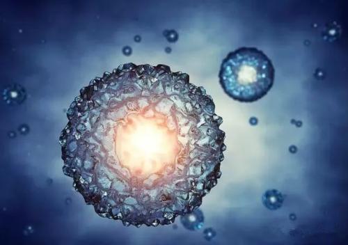 Kangstem Biotech