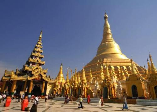东博会助力柬中友好续写繁荣篇章