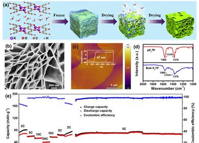 深圳先进院开发出基于有机负极的钾基双离子电池