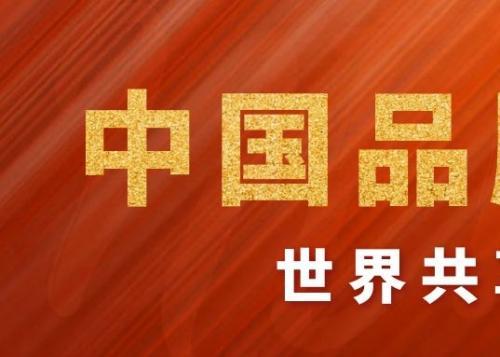 了不起的中国,了不起的你们丨中国品牌,世界共享