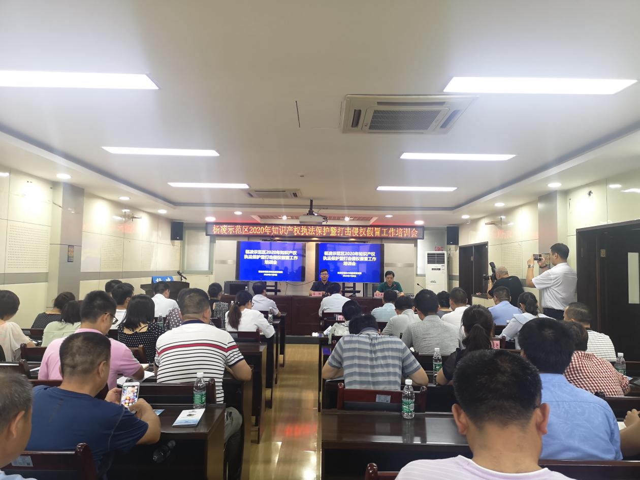 中国-南亚东南亚国际技术转移交易网在行动| 强化知识产权保护,全力推进打假维权