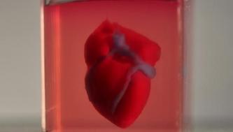 用于测试救命药物的3D打印心脏