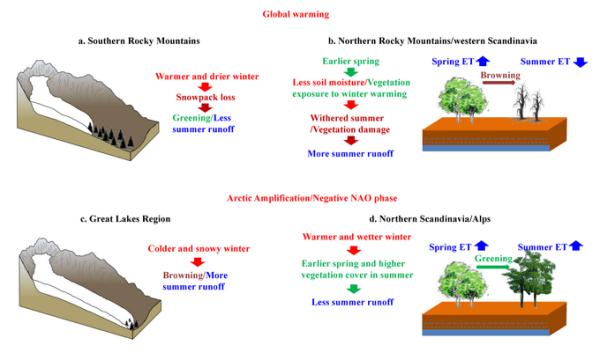 农业资源中心等揭示气候变化下全球植被变绿的水文效应及机理