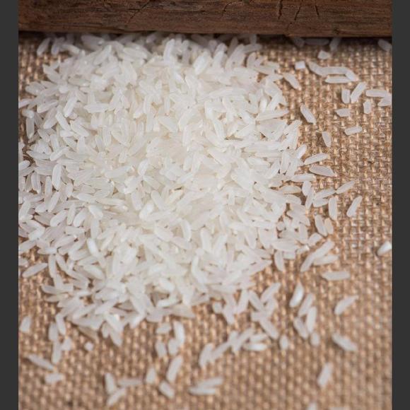 陆稻新品种选育与应用