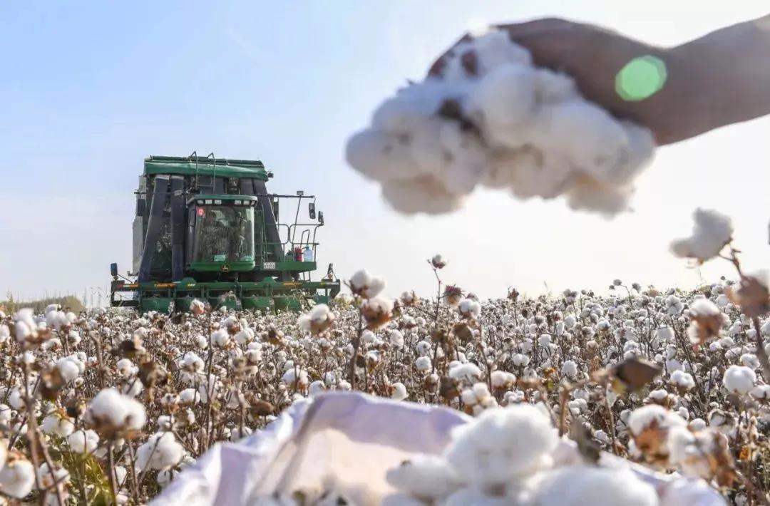 造谣?用专利说话!看新疆采棉技术
