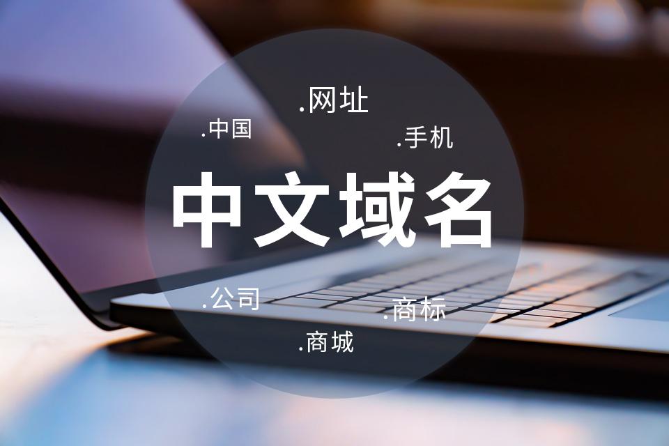 """一图读懂""""中文域名20年""""发展历程"""