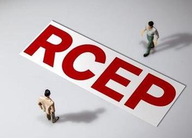 中国已率先批准RCEP!外贸企业如何掘金东南亚市场?